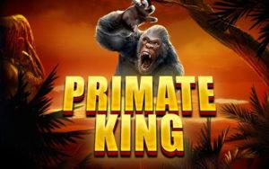 Logo de la machine à sous Primate King