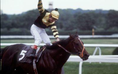 Les 5 chevaux de course les plus célèbres de tous les temps